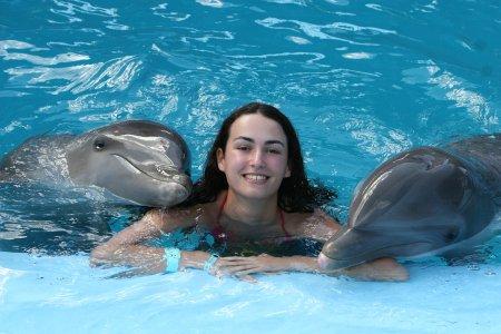 Дельфин
