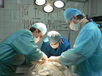 Хірургия