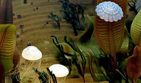 первые живые организмы