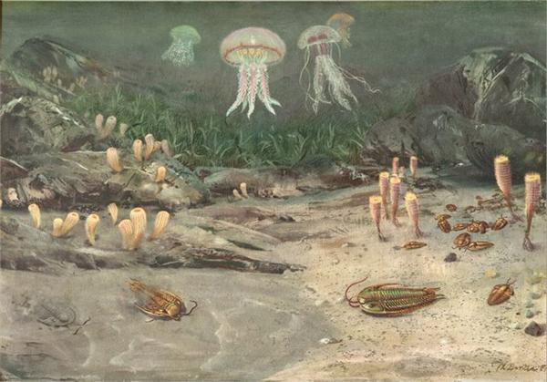 океан в палеозойской ере 2
