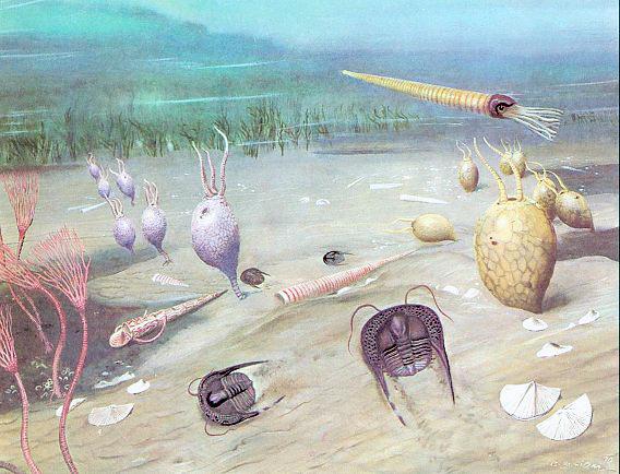 океан в палеозойской ере