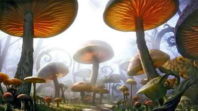 чарівні гриби