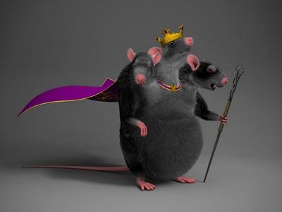 щурячий король