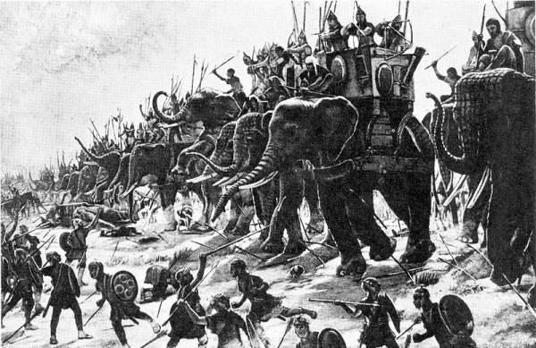 бойові слони