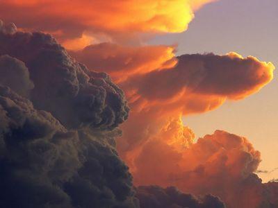 мікроорганізми в хмарах
