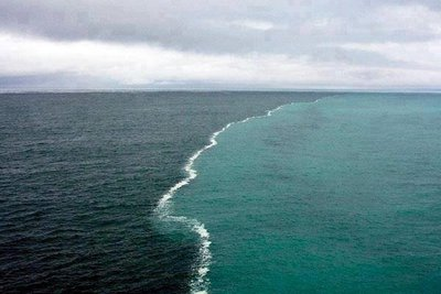 океанські течії