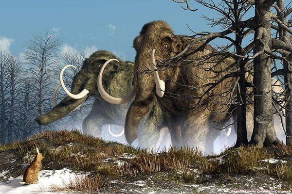 мамонти
