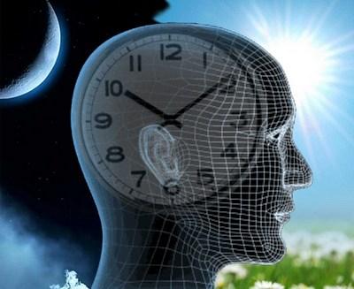 біологічний годинник