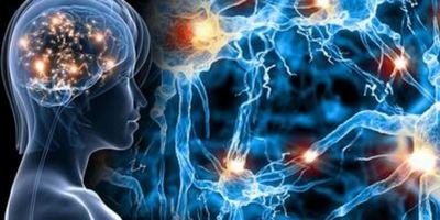 Біохімія психіки
