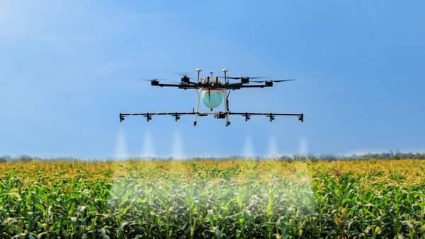 дрон на ферме