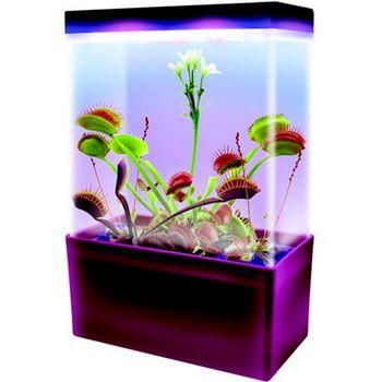 Хищные растения LED Light Cube