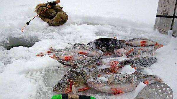 рыбалка при морозе