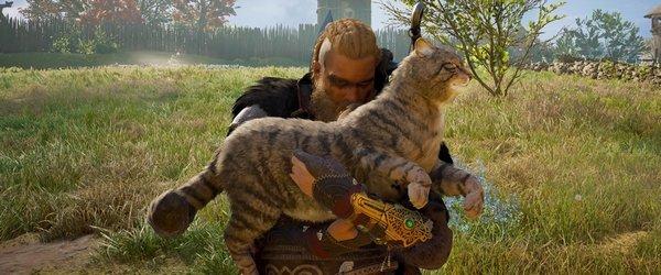 вікінги та кішки